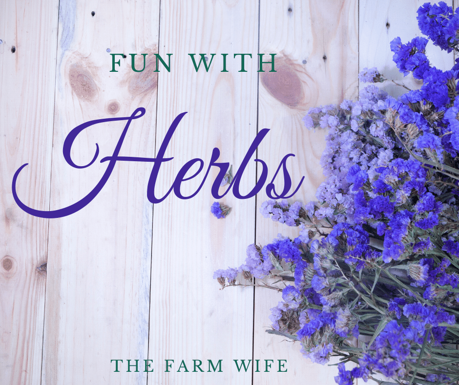 Fun with Herbs