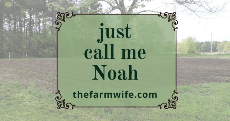 Just call me Noah…