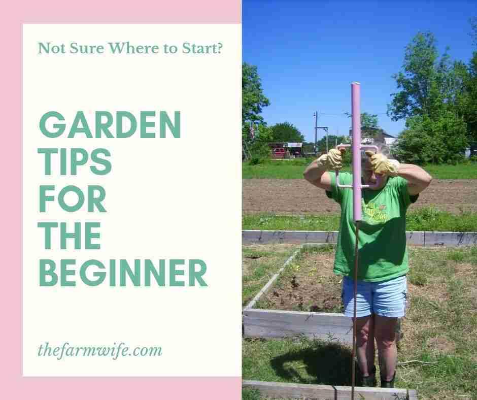 Garden Tips for the Beginner