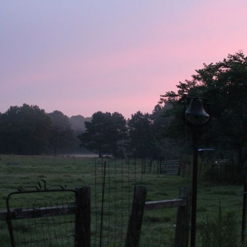 a farm pasture at twilight