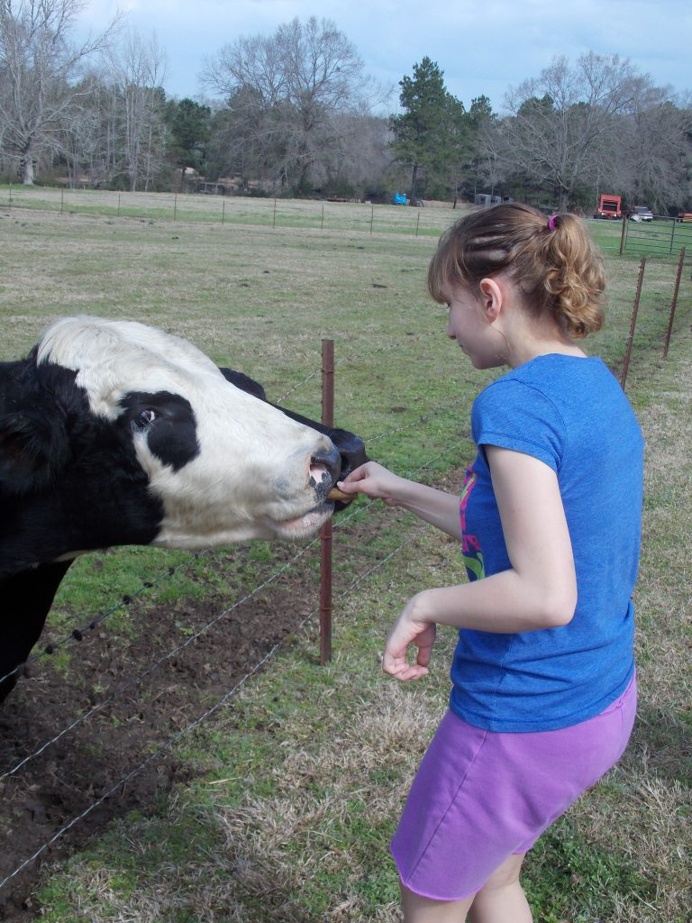 Spending time of the farm helps relieve depression