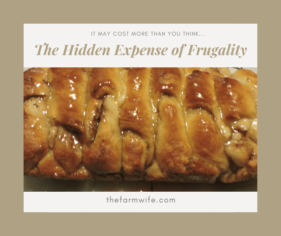 Hidden Expense of Frugality