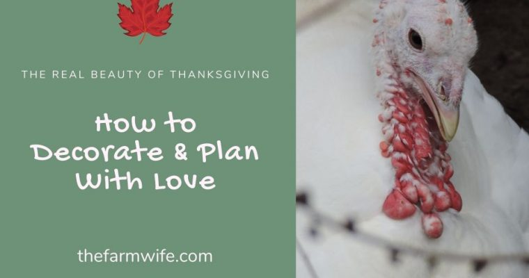 Decorate and Plan with Love for a Better Thanksgiving
