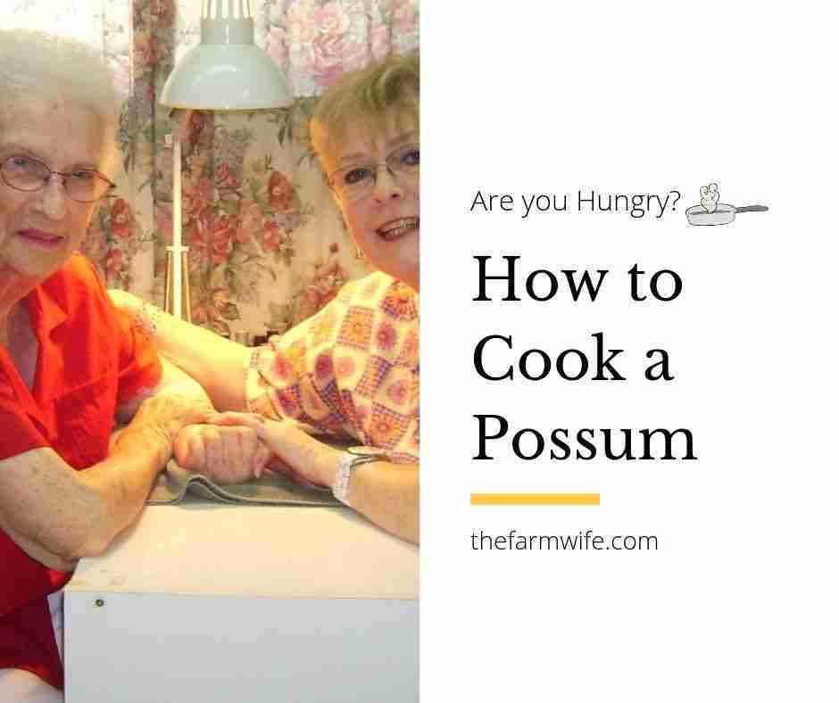 Cooking Possum