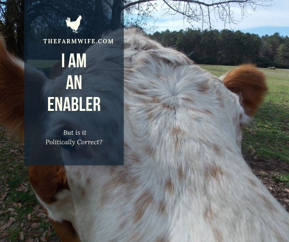 I am an Enabler – But is is Politically Correct?