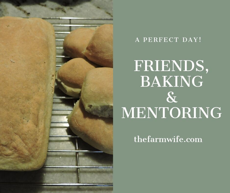 friends, baking & mentoring
