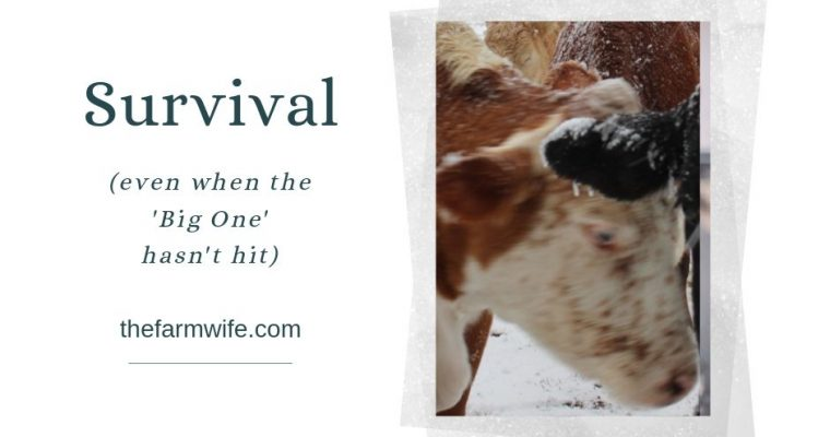 Survival…even when 'The Big One' hasn't hit…