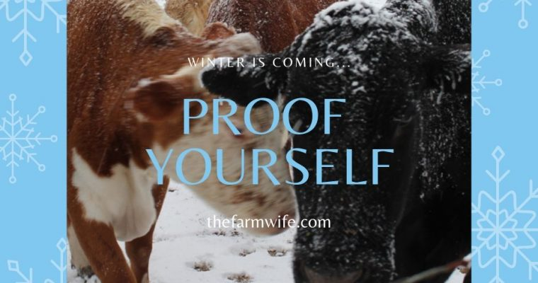 'Proof' Yourself Against Winter