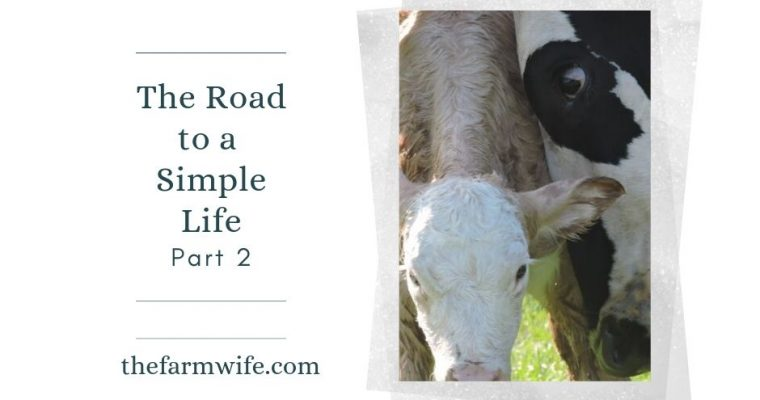 The Road to a Simple Life – Part Two