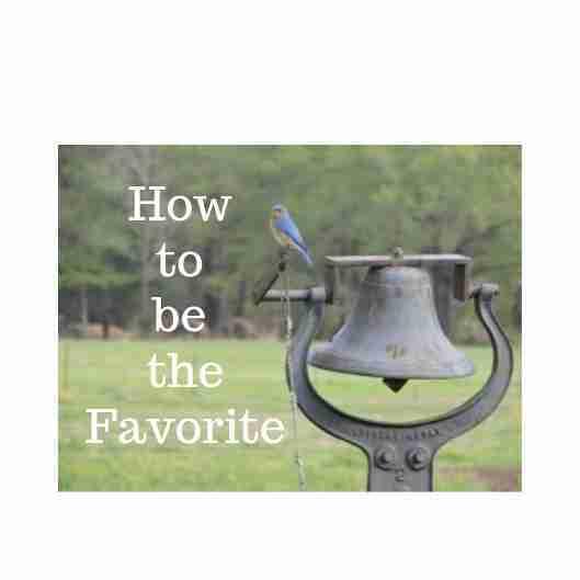 bluebird sitting on a bell