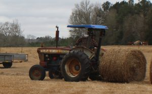 Tractor and hay