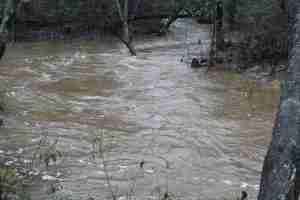 raging water in creek