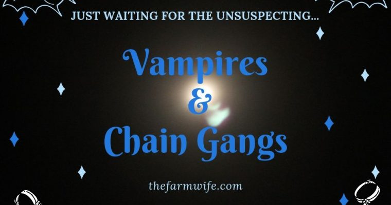 Of Vampires and Chain Gangs…..
