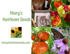 Flowers - Ad for Mary's Heirloom Seeds