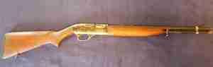 firearms on the farm - rifle