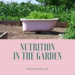 Nutrition in the Garden - Choose Wisely!