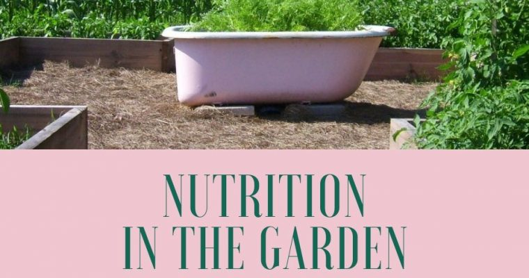 Nutrition in the Garden – Choose Wisely!