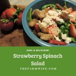 Strawberry Spinach Salad -  How to Enjoy Fresh, Flavor, Cool & Delicious!