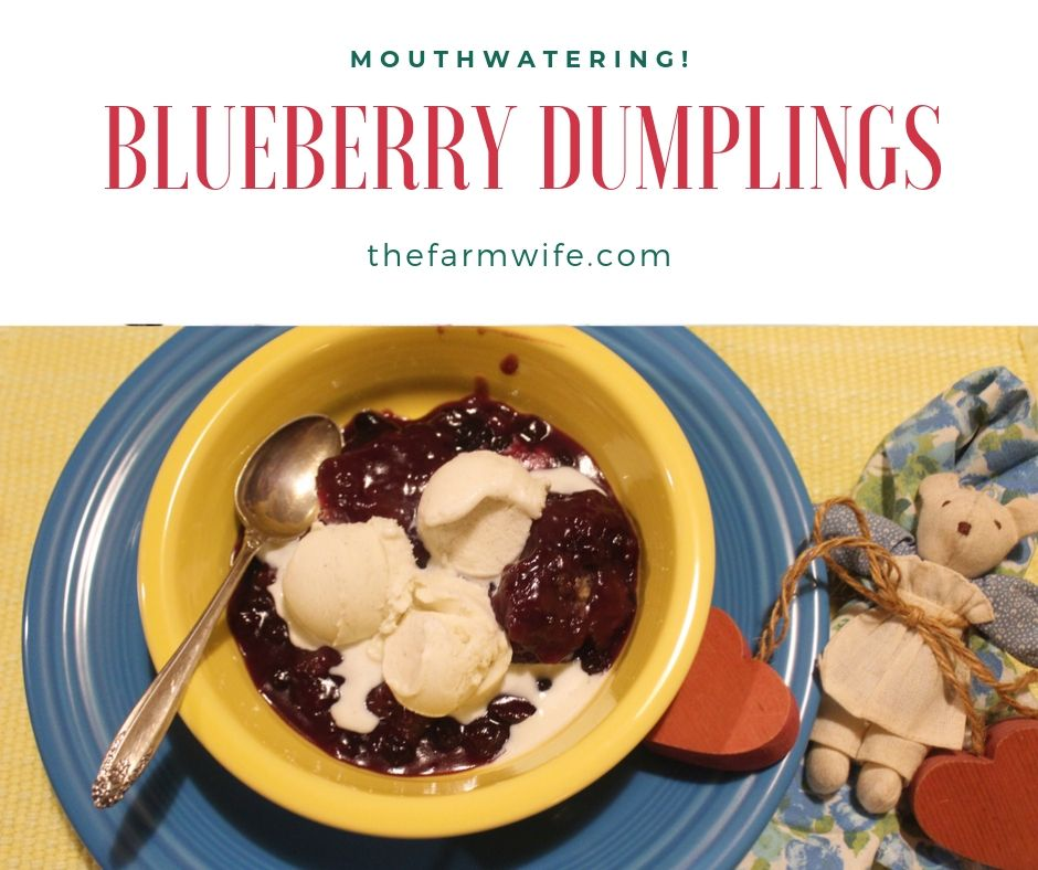 Blueberry Dumplings