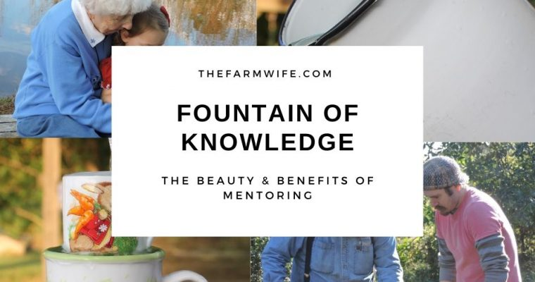 Fountain of Knowledge: The Beauty & Benefits of Mentoring