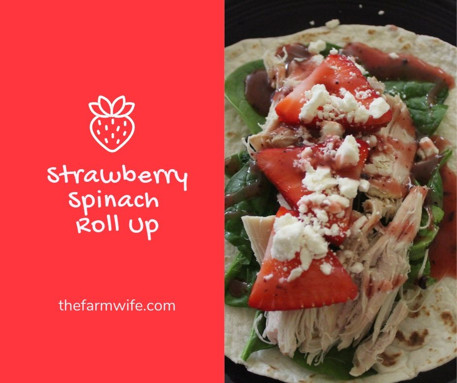 Strawberry Chicken Spinach Roll Up