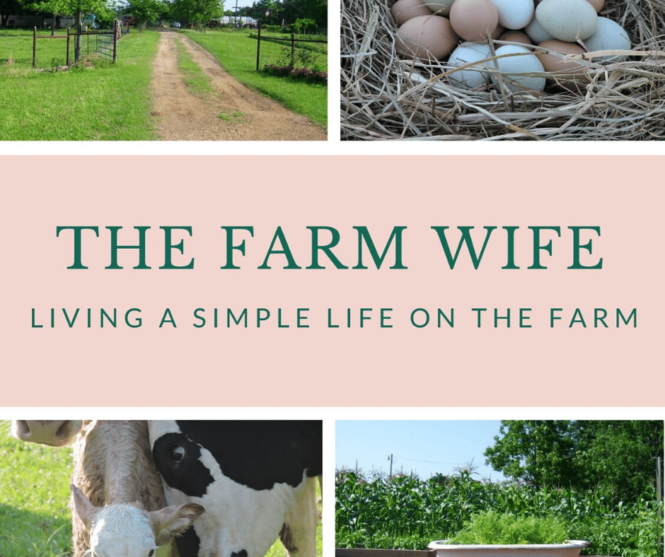 Dream Big - The Farm WIfe Book Cover