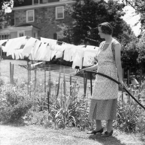Blending Homemaking, Homesteading & A Simple Life - gardening
