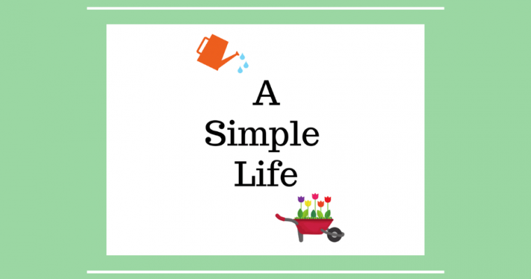Shifting to a Simple Life – An Exciting Adventure!