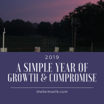 2019 - A Simple Year of Growth & Compromise