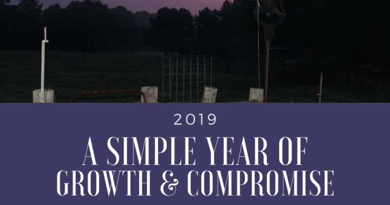 2019 – A Simple Year of Growth & Compromise