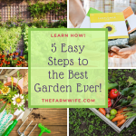 How to Have an Awesome Garden in 5 Easy Steps