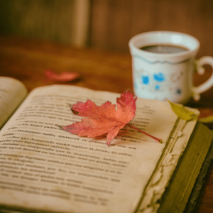 relax and enjoy by reading a book