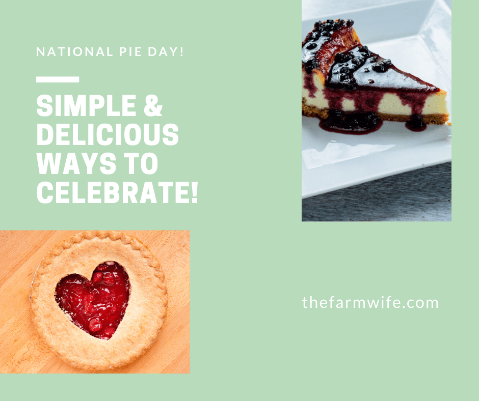 National Pie Day Simple and Delicious Ways to Celebrate