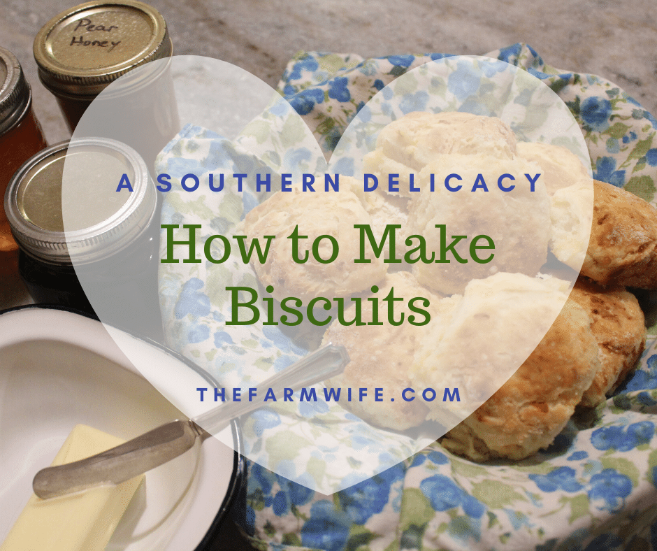 Biscuits – How to Make a Southern Delicacy