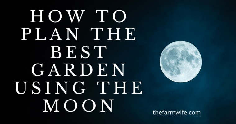 How to Plan the Best Garden using the Moon