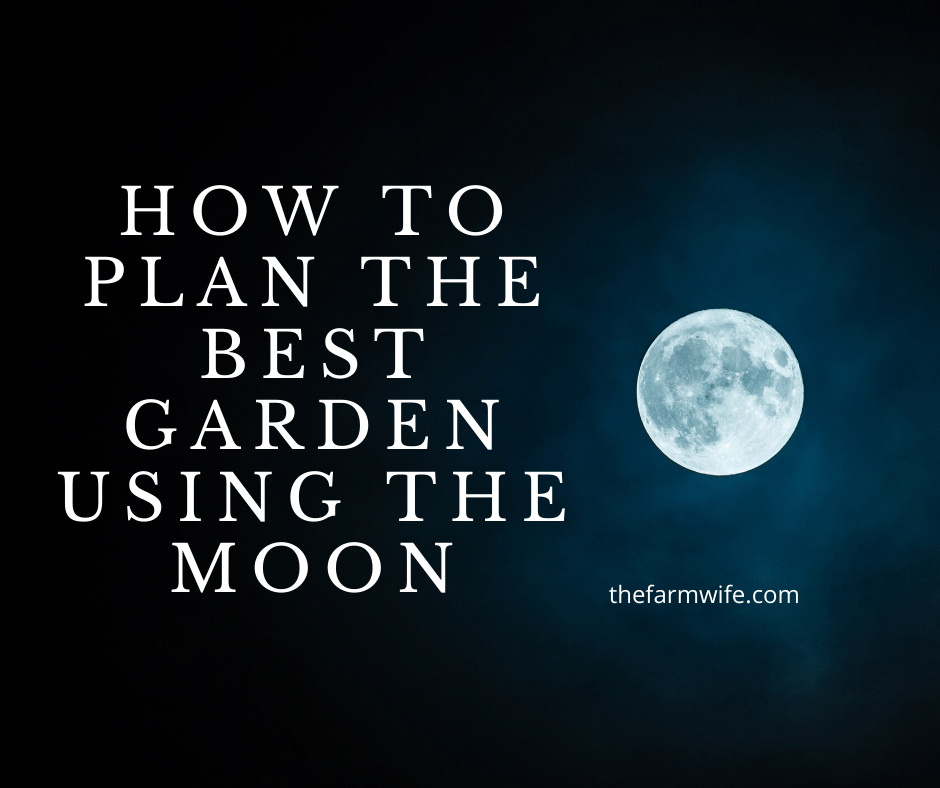 planting by the moon signs & phases