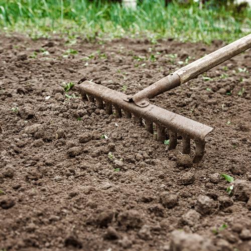 Gardening Prep Tips for Beginners