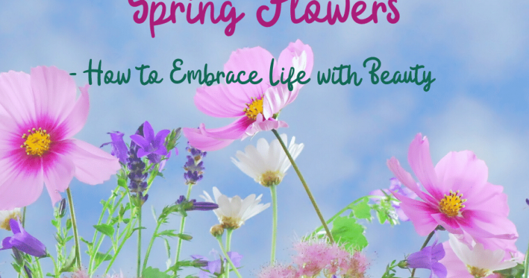 Spring Flowers – How to Embrace Life with Beauty