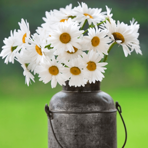 fun vases for spring flowers