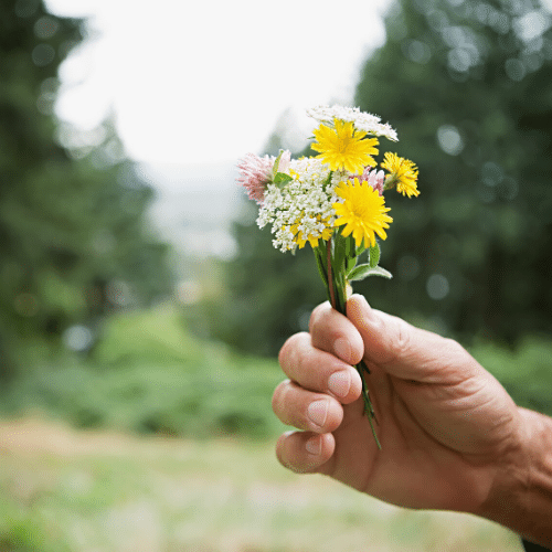 share spring flowers with a friend