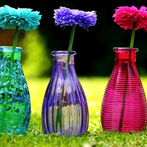 choosing spring flowers to grow