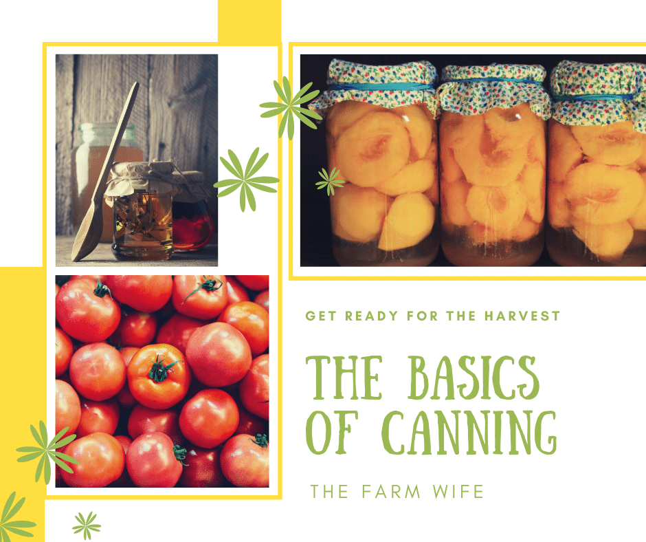 An Easy Guide to The Basics of Canning