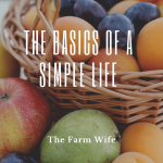 The Basics of a Simple Life