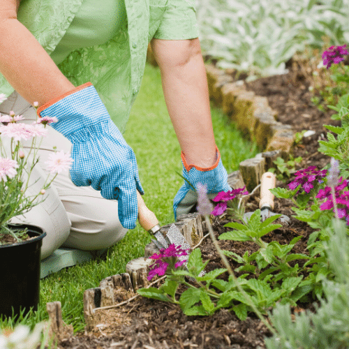Swap Gardening and Yard work Chores