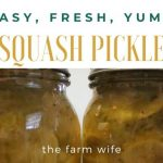 Squash Pickles - Enjoy Out of the Ordinary Deliciousness