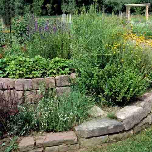 Plan a gardening vacation