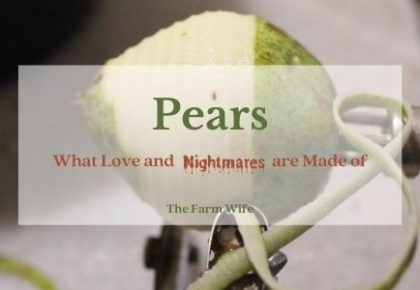 Canning Pears - the joys and nightmares