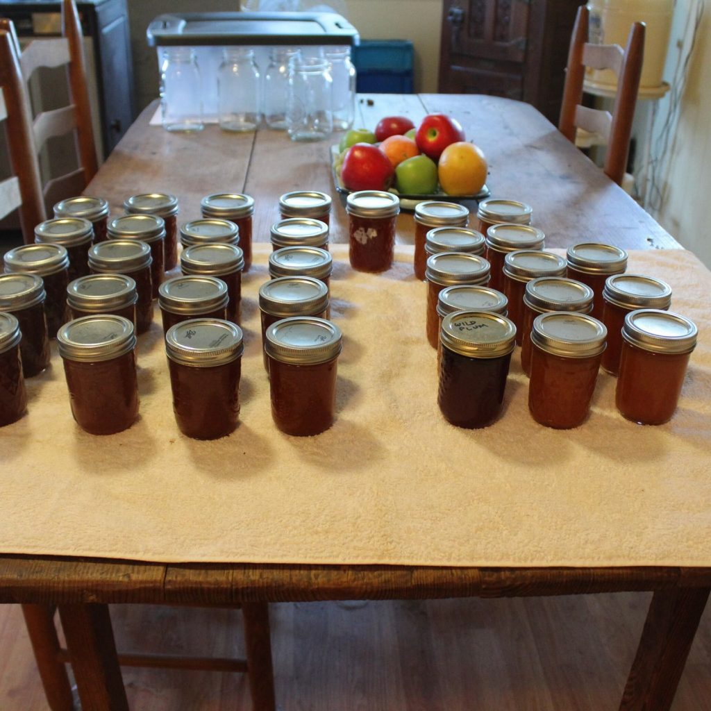 jars of home canned jam