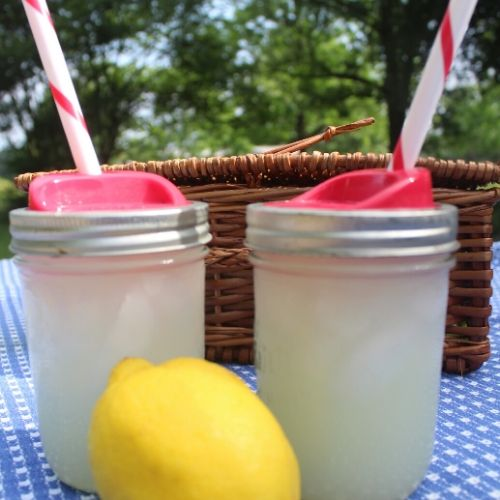 lemonade is the perfect picnic beverage