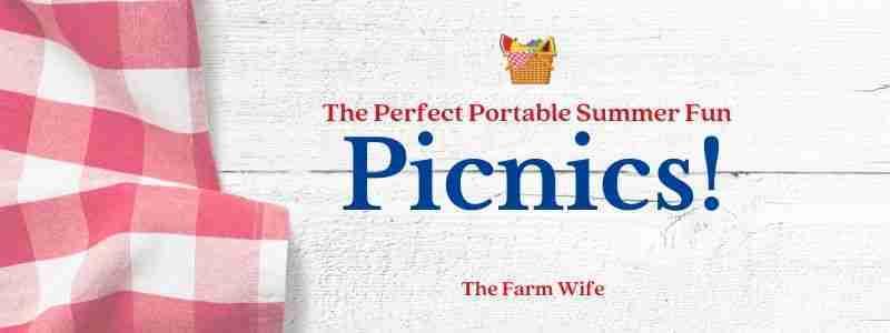 The perfect potable summer fun - picnics